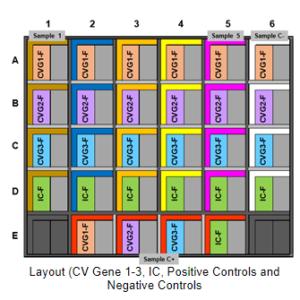 KIT DE DETECCIÓN DE COVID-19 BASADO EN MICROCHIP RT-PCR